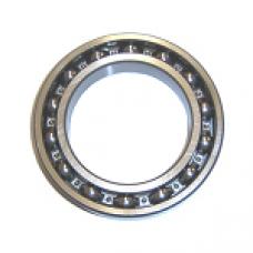 Bearings 1000092Л ( 619/2 )